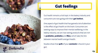 Gut Health Remains A Hot Topic In The Bakery Industry! Discover More.